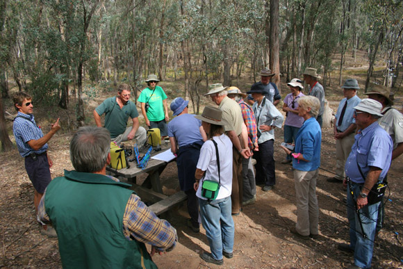 Planning and media at release of captive bred Regent Honeyeaters